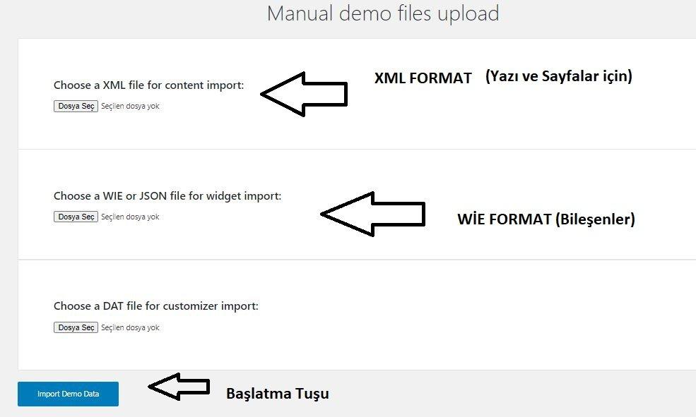 Wordpress tema demodaki gibi nasıl kurulur