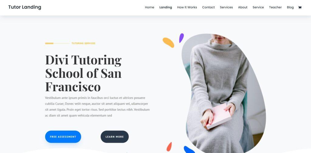 WordPress eğitim teması Divi
